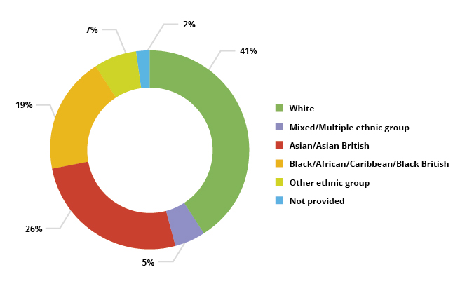 Pie chart showing Number of learners by ethnicity