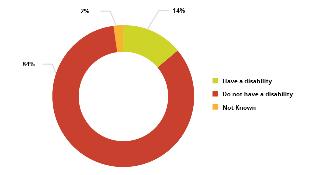 Pie chart showing Number of learners by disability