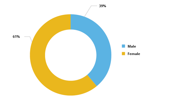 Pir chart showing number of AEB learners by gender